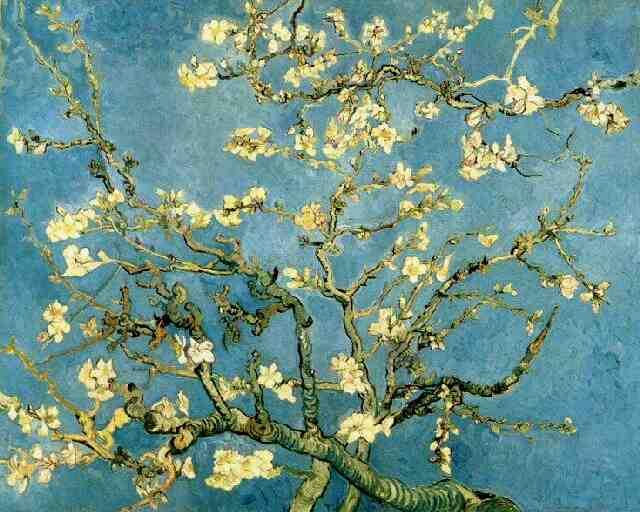 http://artsdot.com/A55A04/w.nsf/OPRA/BRUE-5ZKG9J/$File/Vincent+Van+Gogh+-+Blossoming+Almond+Tree+2+.JPG