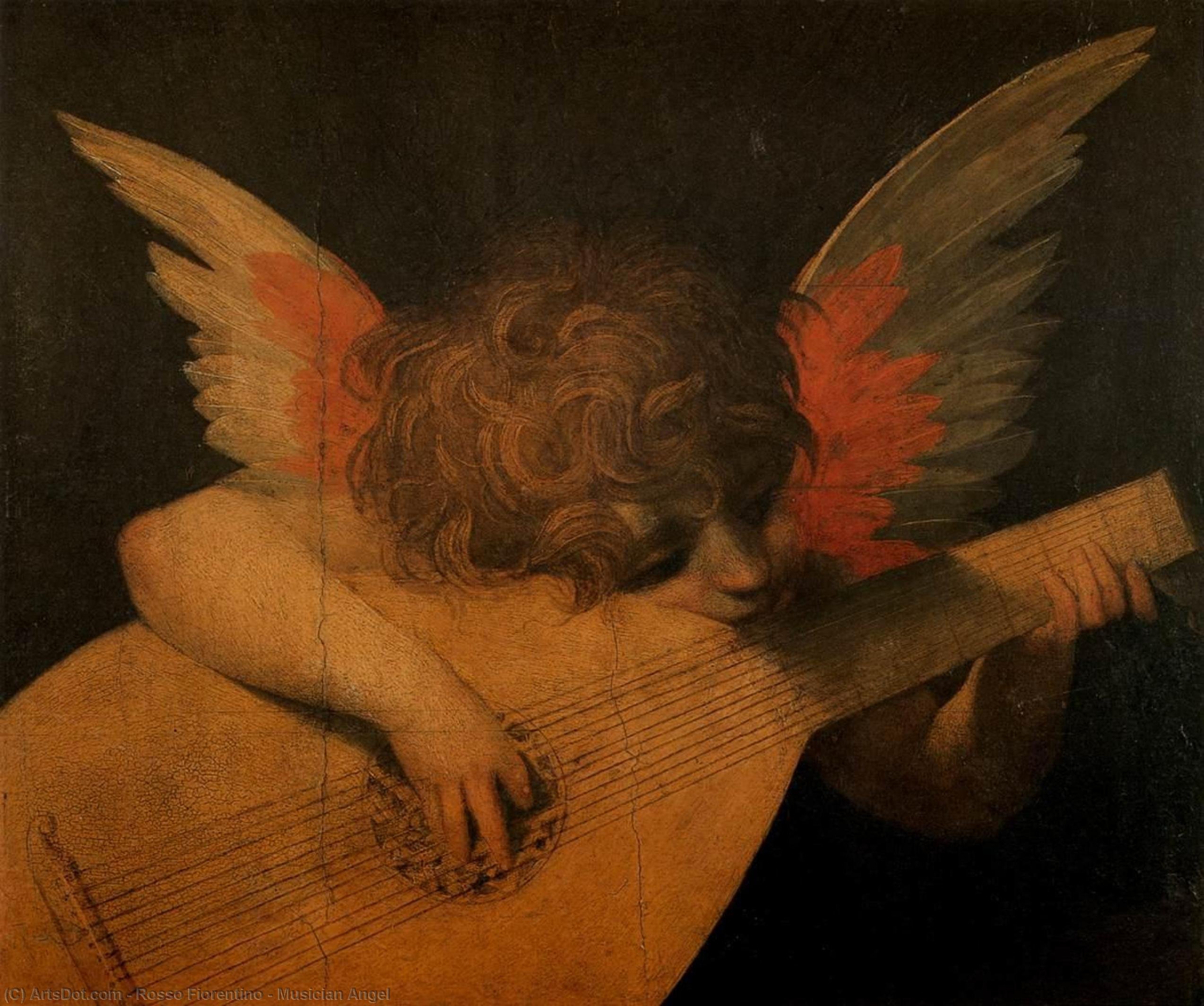 Musician Angel, 1520 by Rosso Fiorentino (1495-1540, Italy) | Museum Art Reproductions | ArtsDot.com