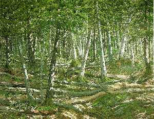 Neil Gavin Welliver - Old Windfall