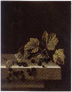After Adriaen Coorte - English Black Currants