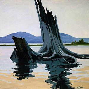 Neil Gavin Welliver - Stumps and Allagash