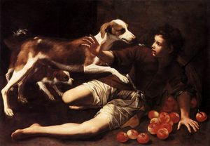 Pedro Núñez De Villavicen.. - Boy Attacked By A Dog
