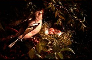 William Hughes - A Chaffinch at its Nest