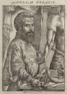 Andreas Vesalius - Portrait of Vesalius from..
