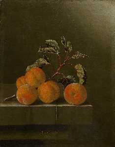After Adriaen Coorte - English Still life with f..