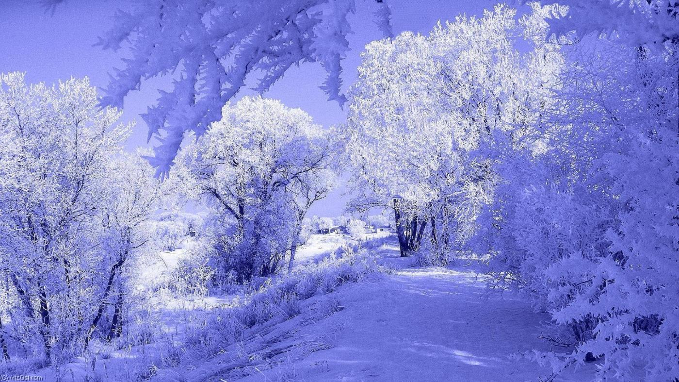 Открытка с зимой фото